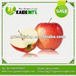 Gala Apple Carton Packaging