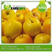 Fresh Gala Green Apple