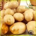 Frische kartoffeln, frisches gemüse aus china, gute qualität