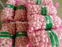 China Cheap Garlic 20kg/bag