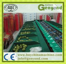 Fruit Sorting and Grading Machine for apple, orange, potato, tomato, kiwi fruit, pear