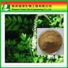 Cimicifugae racemosae rhizomev powder/Actaea racemosa powder