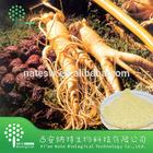 Top Quality Panax Ginseng P.E.