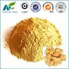 high quality 100% natural ginger powder