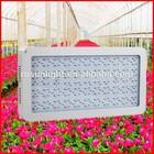 Full spectrum LED 300W flower bloom growing light