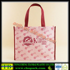 China factory supply beautiful custom printed tote non woven bag