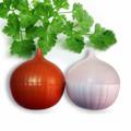 Produtos de utilidades domésticas, produtos de cozinha, frutas frescas recipiente de shenzhen