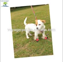 Voyager Pet dog walking Fur Trim dog shoes