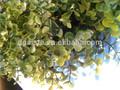 Rl/08-28/04 künstliche ring Blätter( künstliche magnolie blatt/künstliche Gras deste)