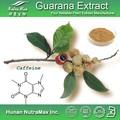 100% guaraná Natural , semente p.E 10% cafeína / Guarana pó de semente de