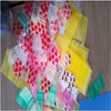 China Hot Sale Plastic Zip Lock Mini Apple Bags