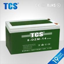 Maintenance Free Battery For E-bike 8-DZM-14 Battery