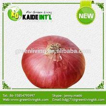 2014 Fresh Baby Onion