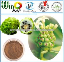 Dried fruit powder/Noni fruit/ Noli powder