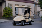 Electric Golf Carts, 2 seats, CE approved,EQ9022