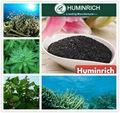 Huminrich Shenyang 15% algues laminaires Laminaria