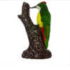 new arrival cute design colourful Lancashire canary birds yorkshire