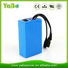 6600mAh12V DC ups battery for CCTV Cameras and home solar system