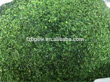 Japanese AO nori /Ulva/green seaweed