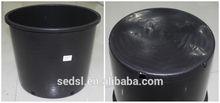 1 gallon plastic pot plants