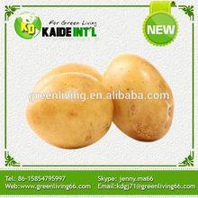 2014 Potato Pringles