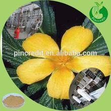 Natural damiana extract pure damiana plant