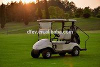 Single seat electric golf cart with mini electric golf cart 48V/3000W, CE Approved electric utility vehicle