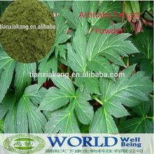 High quality Ashitaba leaf Extract chalcone powder with competitive price/High quality Ashitaba Powder