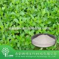 Natural y saludable de stevia edulcorante extracto( glucósidos de esteviol 98%, sg98)