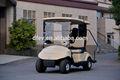 venta al por mayor 2 plazas del vehículo eléctrico del coche de golf resort baratos carro mini carrito de golf buggy con la placa