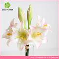 yapay çiçek gerçek dokunma zambak yapay lateks çiçek