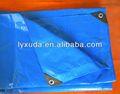 4*8 plástico pe encerado folha de fábrica na china