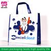 Guangzhou wholesale pp non woven shopping bag laminated