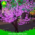 de color rosa cereza de árboles tropicales nombres