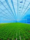 Greenhouse lighting panels