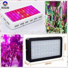 Full spectrum 300W LED grow light green house grow lighting