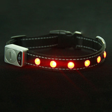 best selling Pet led innovative products for dog safety