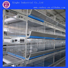 H Type High Capacity Cage/Welded Wire Chicken Cages/Poultry Cage Rearing