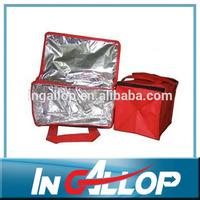 Disposable 600d cooler bag