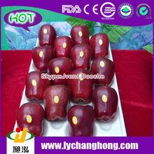 Fresh Fruit/Apple Fruit/Fresh Apple