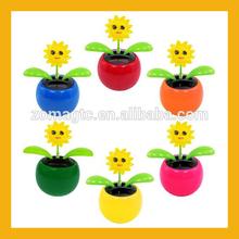 Smiling Solar Dancing Flower