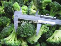 IQF frozen broccoli, Frozen vegetables, IQF broccoli