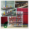 Commerial durable multi-tier h type chicken broiler house design