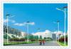 12v 30w manufactured in China solar led street light