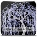 las ramas de sauce con luces