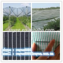 hail protection net for bird/anti hail net / net antigranizo