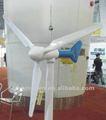 48v Mini rüzgar dinamo jeneratör 500w