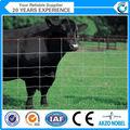 Atado gado galvanizado/veados/frango fazenda esgrima malha