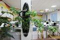 Hot vente 2014 prix usine artificiels, mur végétal