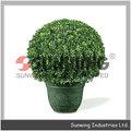 mais recente sunwing buxo preservada ivy bola bola topiary